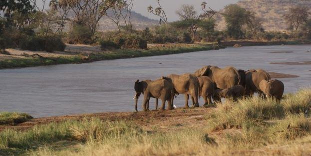 Isla Elefanta