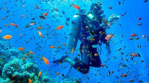 buceo en islas galapagos