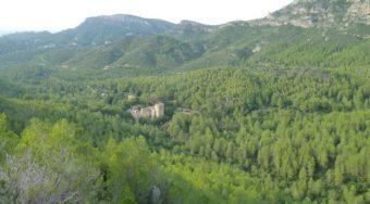 lugares que visitar alzira valencia