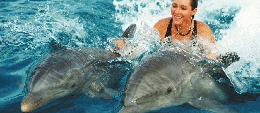 nadar con delfines isla mauricio