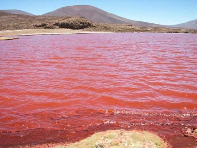 El sorprendente Lago Rosa de Senegal