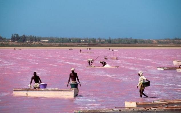 lago rosa dakar