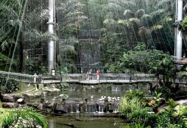 KL Bird Parque
