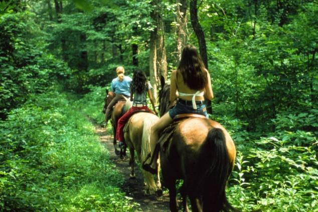 Rutas a Caballo, practicar la equitación en Galicia