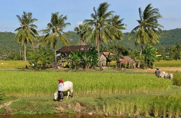para visitar en Camboya