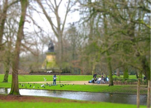 ver en amsterdam Parque Nieuwe