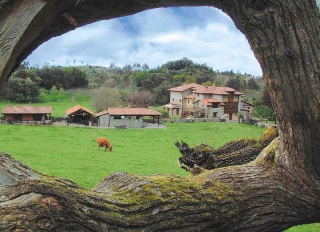 Ideas para hacer turismo rural