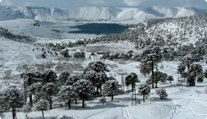 esquí en Caviahue en la provincia argentina de Neuquén