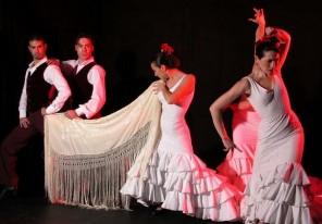 flamenco patrimonio de la humanidad