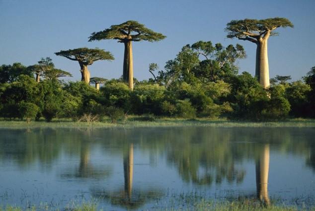 islas increibles ecoturismo Madagascar