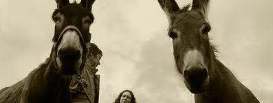 refugio de burros malaga