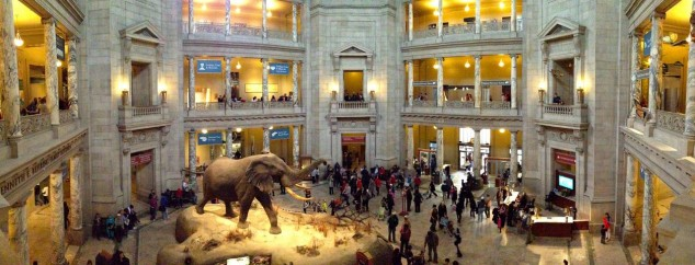 visitar en washington Museo Nacional de Historia Natural