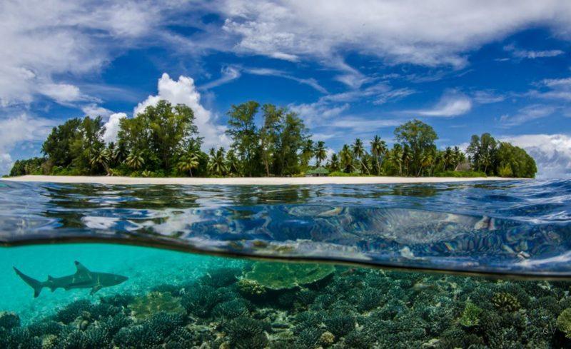 islas parasidiacas