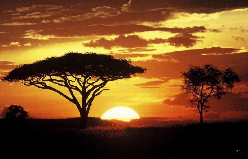 puesta del sol serengeti tanzania