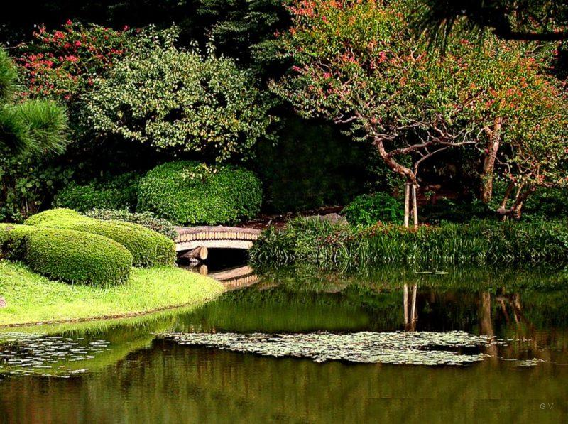 jardines imperiales tokio