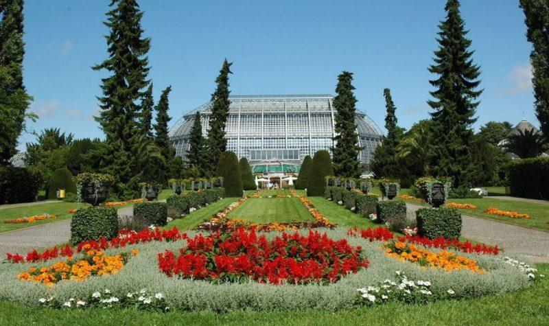 visitar jardin botanico en berlin