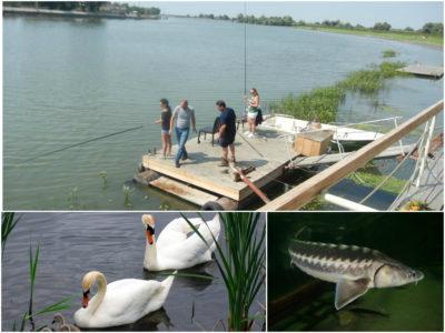 delta-del-danubio-pescar