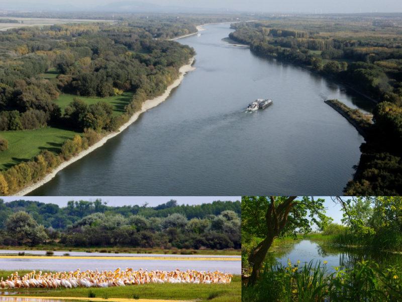 delta-del-danubio-tulcea-rumania